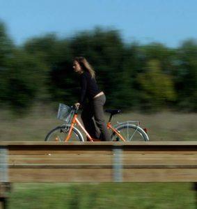 En bici por Salburua