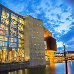 Bilbao Orkestra Sinfonikoa (BOS)