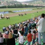 Racetrack´s horse racing